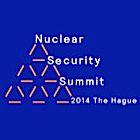 Logo NSS 2014