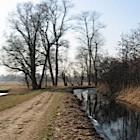 Amsterdamse Bos - Foto: Arnoud Hugo