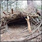 Hut onder boom - Foto: Arnoud Hugo